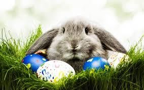 Easter Activities for Children in H&F