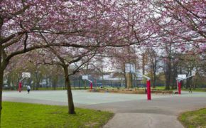ravenscourt_park_bottom_edit