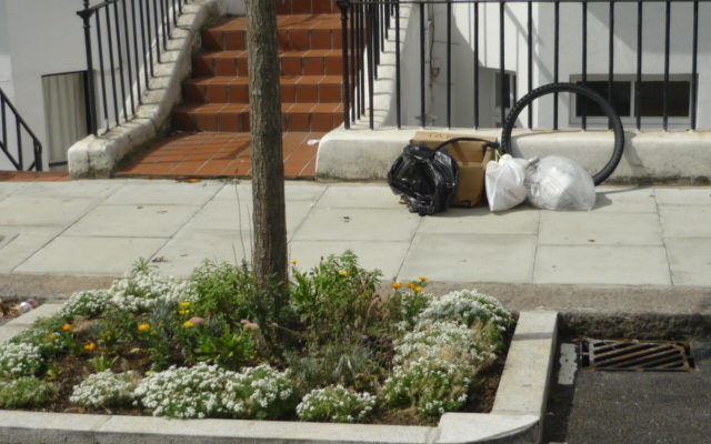 The State of Overstone Road Rubbish