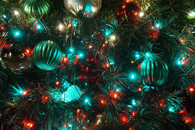 Lighting of the Christmas Tree: 7 December, 2018